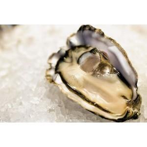 ancelin oysters hong kong