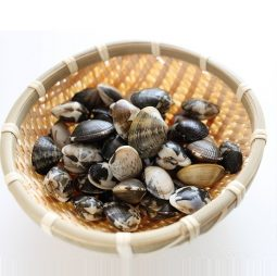 Shellfishes